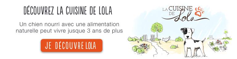 La Cuisine de Lola - Une alimentation naturelle permet à votre chien de vivre 3 ans de plus